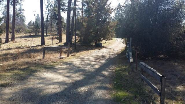 5394 Tip Top Rd, Mariposa, CA 95338 (#542576) :: FresYes Realty