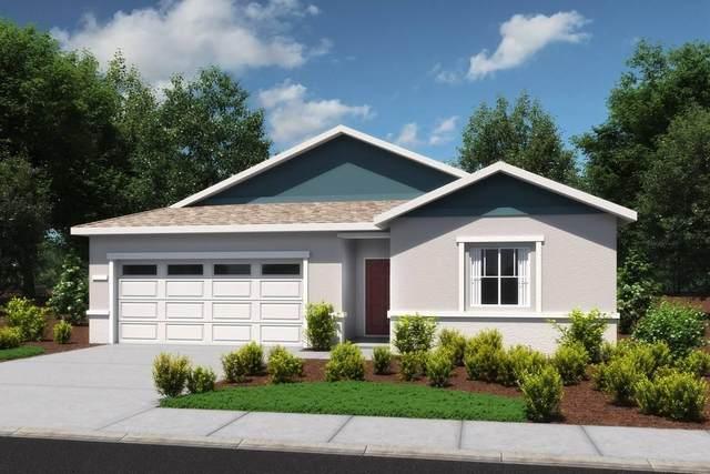 6694 E Castle Avenue, Fresno, CA 93727 (#543489) :: Raymer Realty Group