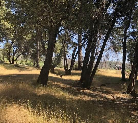 2384 Shade Tree, Mariposa, CA 95338 (#543762) :: FresYes Realty