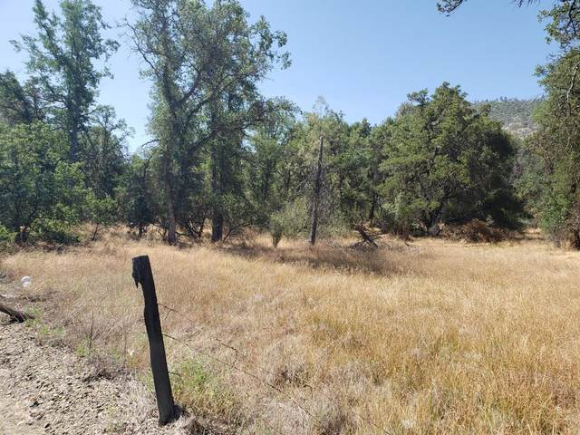 0 Lodge Rd, Tollhouse, CA 93667 (#543908) :: Raymer Realty Group