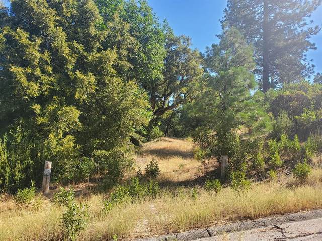 0 Munson Lane, Wishon, CA 93669 (#543985) :: Raymer Realty Group