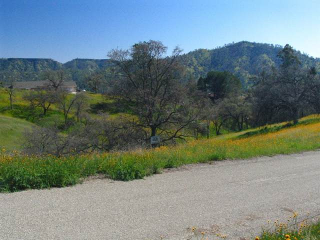102-Lot Anza Drive, Friant, CA 93626 (#544054) :: FresYes Realty