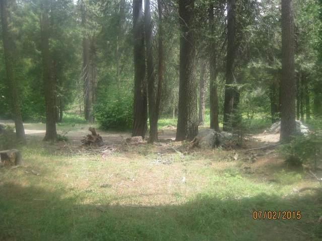 39701 Littleridge Lane Lot 6, Shaver Lake, CA 93664 (#544294) :: FresYes Realty