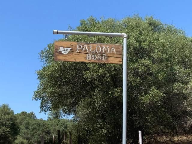 46333 Paloma Road, Coarsegold, CA 93614 (#544324) :: Twiss Realty