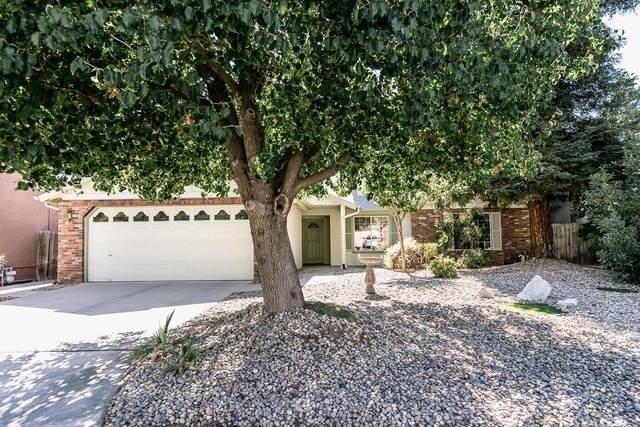 6089 N Tracy Avenue, Fresno, CA 93722 (#544621) :: FresYes Realty