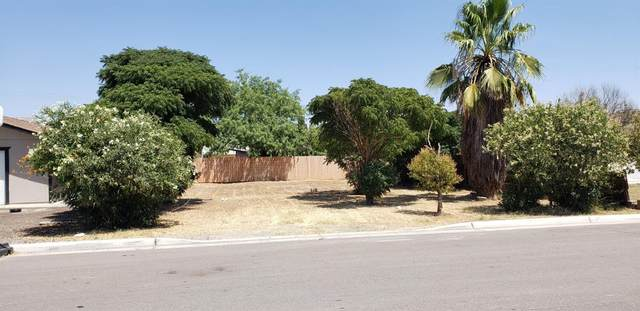 507 Claire Avenue, Corcoran, CA 93212 (#544781) :: Raymer Realty Group