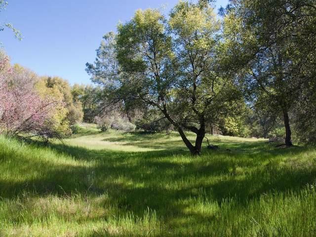 4668 Ashworth Road, Mariposa, CA 95338 (#545754) :: Raymer Realty Group