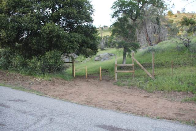 0 Rd. 210, Friant, CA 93626 (#545768) :: Raymer Realty Group