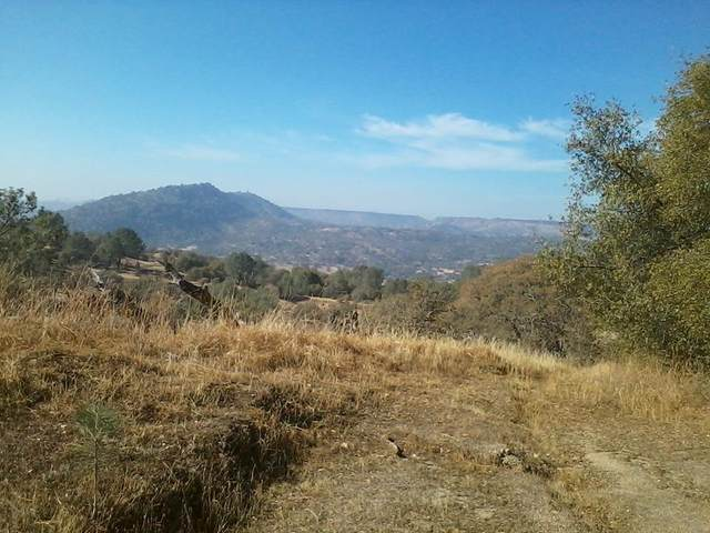 0 Address Not Published, Prather, CA 93651 (#546138) :: FresYes Realty