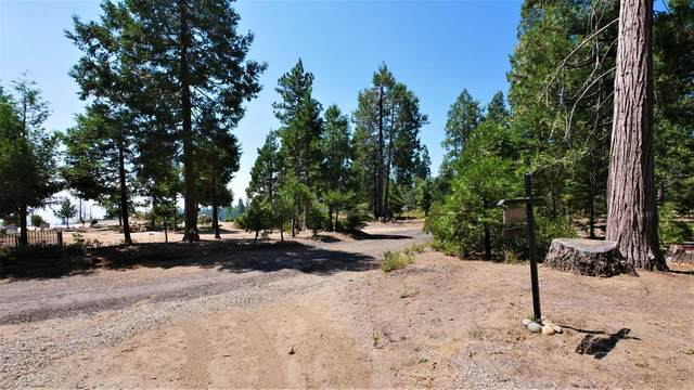 0 Address Not Published, Shaver Lake, CA 93602 (#547471) :: Raymer Realty Group