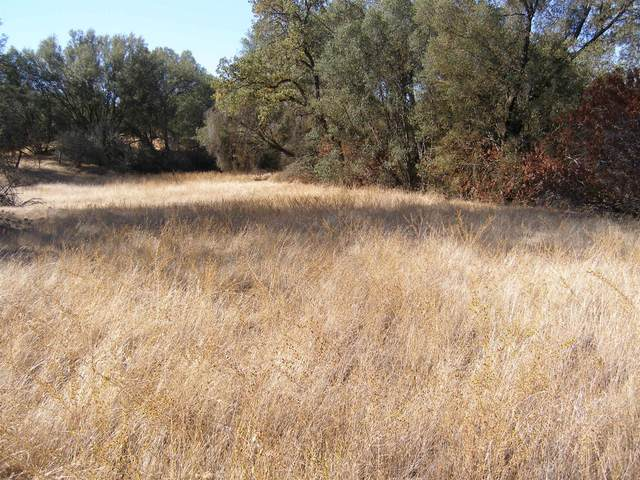 2-86 Acres Lodge Rd, Auberry, CA 93602 (#547542) :: Raymer Realty Group