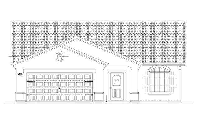 1124 E Kern Street, Avenal, CA 93204 (#548362) :: Realty Concepts