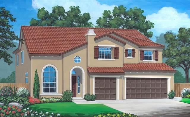 3680 Portals Avenue, Clovis, CA 93619 (#548501) :: FresYes Realty