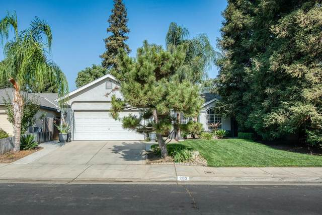 293 W Kelly Avenue, Clovis, CA 93611 (#549600) :: Raymer Realty Group