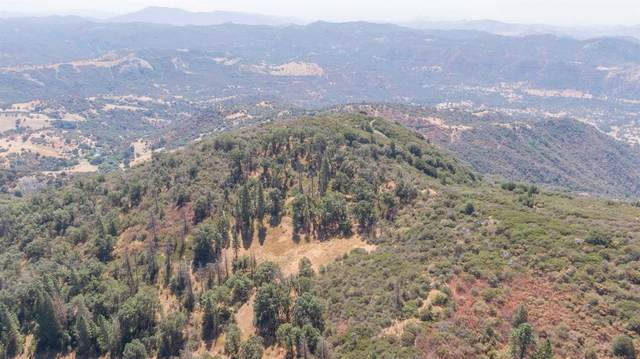 44138 E Kings Canyon Road, Dunlap, CA 93621 (#549920) :: Your Fresno Realty | RE/MAX Gold