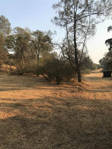 0 Jennifer Way, Coarsegold, CA 93614 (#549998) :: Your Fresno Realty | RE/MAX Gold