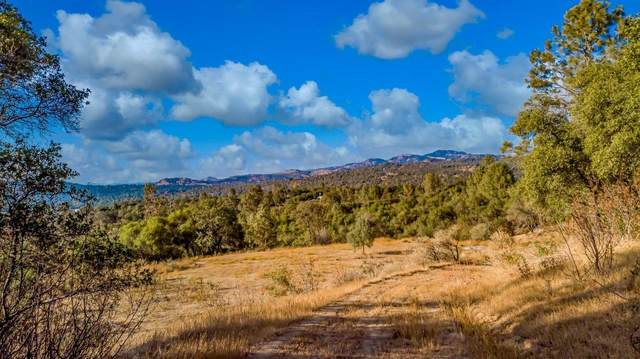 0-9.07 AC Vista Benita Drive, Coarsegold, CA 93614 (#550054) :: Raymer Realty Group