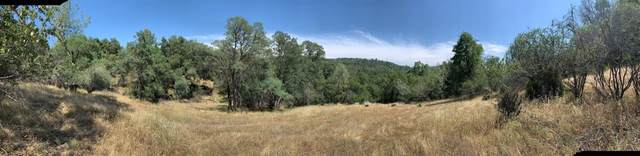 0 Whitto Mine Lot #81, Sonora, CA 95370 (#550129) :: FresYes Realty