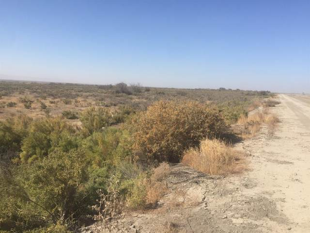 0 00, Buttonwillow, CA 93206 (#550507) :: Your Fresno Realty | RE/MAX Gold