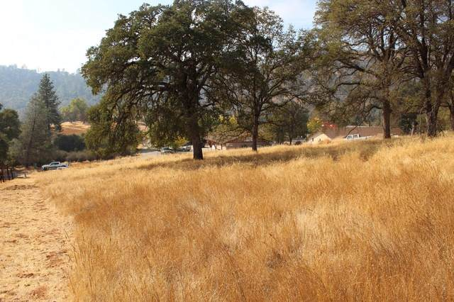 0-1.17 AC Highway 49, Mariposa, CA 95338 (#550633) :: Your Fresno Realty | RE/MAX Gold