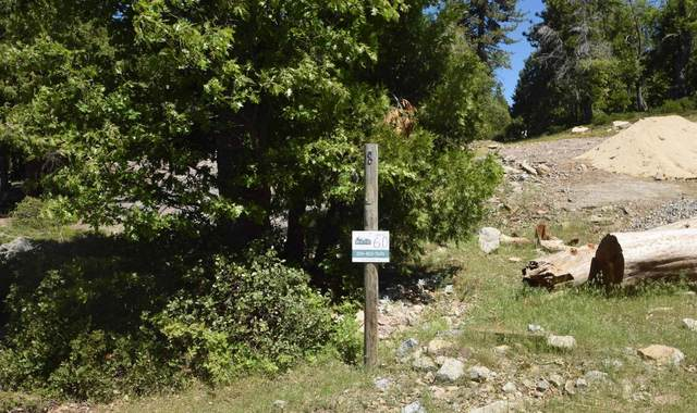 42351 Opal Lane Lot60, Shaver Lake, CA 93664 (#551265) :: FresYes Realty