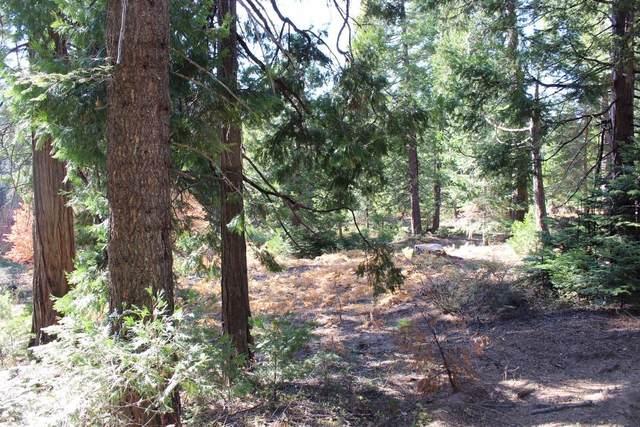 0 Timber Ridge Lane Lot 7, Shaver Lake, CA 93664 (#551721) :: FresYes Realty