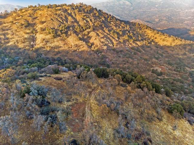 0 Ruth Hill Rd Lot #223, Squaw Valley, CA 93675 (#552174) :: Your Fresno Realty | RE/MAX Gold