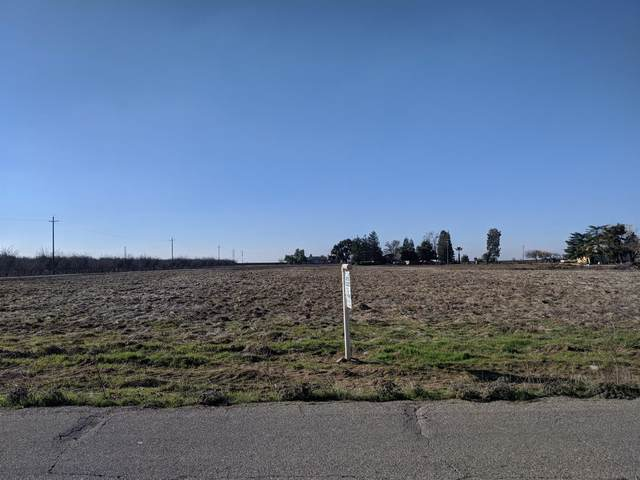 20824 Road 24, Madera, CA 93638 (#552815) :: Your Fresno Realty   RE/MAX Gold