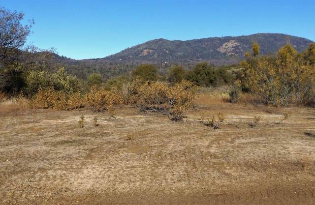 0-24.27 AC Hilltop Lane, Ahwahnee, CA 93601 (#552853) :: Your Fresno Realty | RE/MAX Gold