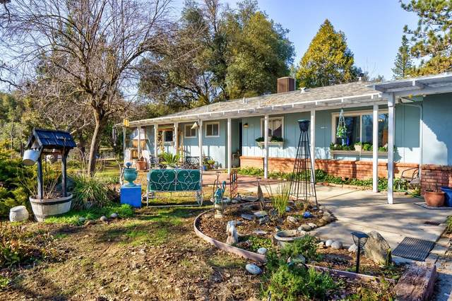 45391 S Oakview Drive, Oakhurst, CA 93644 (#553072) :: Your Fresno Realty   RE/MAX Gold