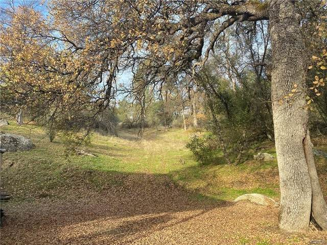 3302 Windy Hollow, Mariposa, CA 95338 (#553112) :: Your Fresno Realty | RE/MAX Gold