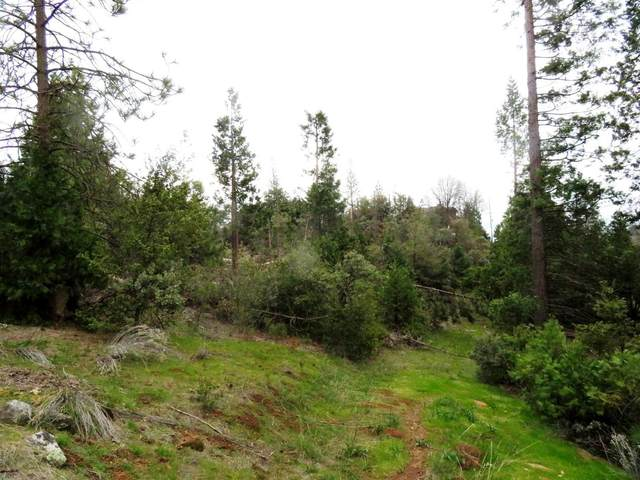 0-2.8 AC Taylor Ridge Road, North Fork, CA 93643 (#553136) :: FresYes Realty