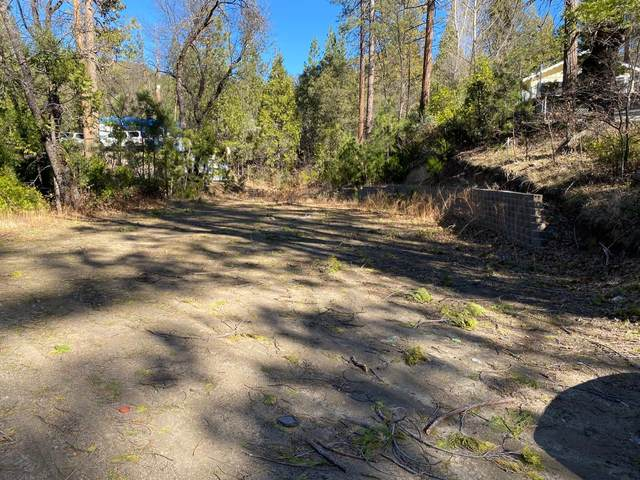 53295 Road 432, Bass Lake, CA 93604 (#553245) :: Your Fresno Realty | RE/MAX Gold
