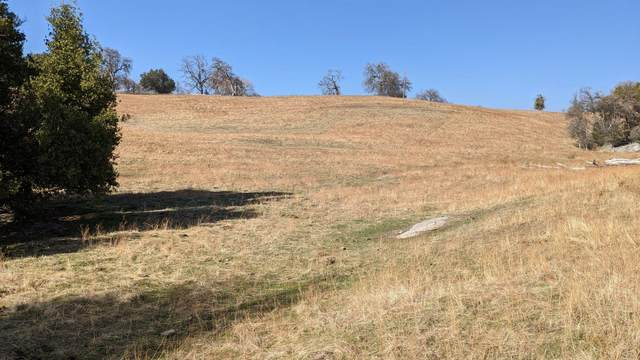 0 22.67 Acre Whitaker Forest Road, Badger, CA 93603 (#553306) :: Raymer Realty Group