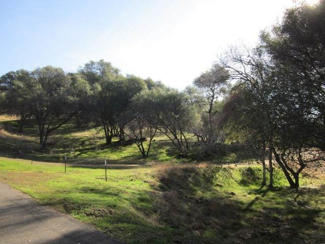 0-4.86AC Address Not Published, Oakhurst, CA 93644 (#553415) :: Raymer Realty Group