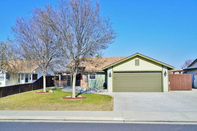 1072 Clover Lane, Hanford, CA 93230 (#553423) :: Realty Concepts
