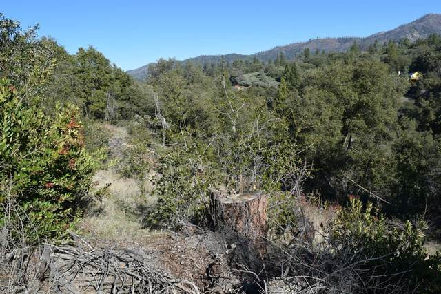 5676 Clouds Rest, Mariposa, CA 95338 (#553432) :: Twiss Realty