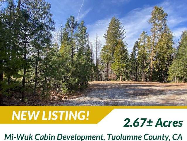 24931 State Highway 108, Tuolumne, CA 95335 (#553482) :: Raymer Realty Group