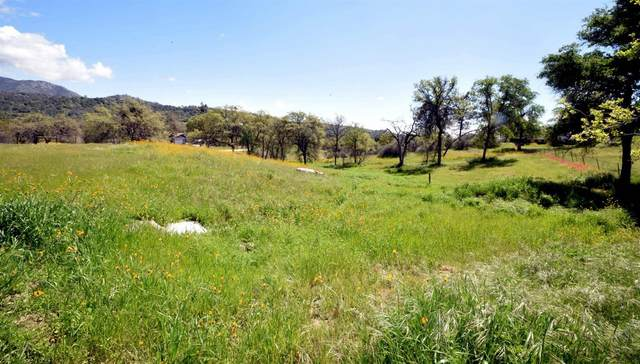 4 Gooseberry, Prather, CA 93651 (#555264) :: Raymer Realty Group