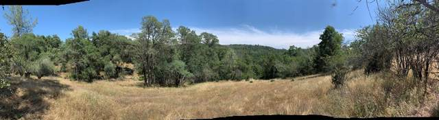 0 Whitto Mine Road Lot #81, Sonora, CA 95370 (#555520) :: Your Fresno Realty   RE/MAX Gold