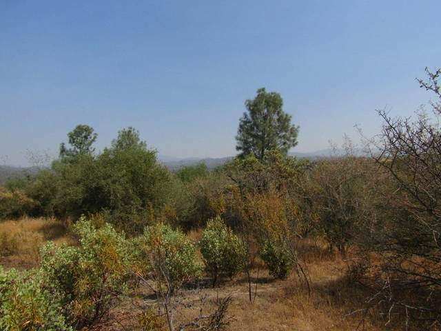 0-4.55 AC Kennedy Road, Coarsegold, CA 93614 (#555572) :: eXp Realty