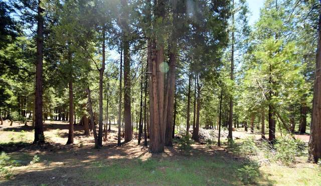 42642 Garnet Lane Lot43, Shaver Lake, CA 93664 (#555654) :: eXp Realty