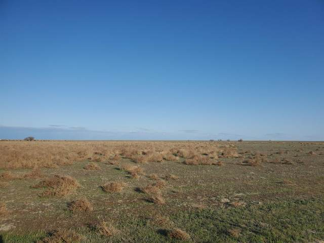 0 Utica Avenue, Kettleman City, CA 93239 (#556380) :: Raymer Realty Group