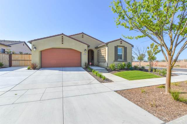 726 Overstone Avenue, Madera, CA 93636 (#556935) :: Your Fresno Realty | RE/MAX Gold