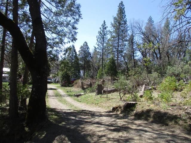 53216 Hidden Meadow Road, Oakhurst, CA 93644 (#557447) :: Twiss Realty