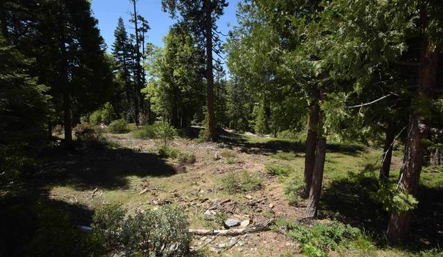 42208 Opal Lane Lot74, Shaver Lake, CA 93664 (#557463) :: Raymer Realty Group