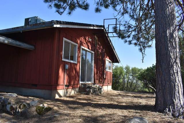 56430 Horn Road, North Fork, CA 96643 (#559680) :: Twiss Realty