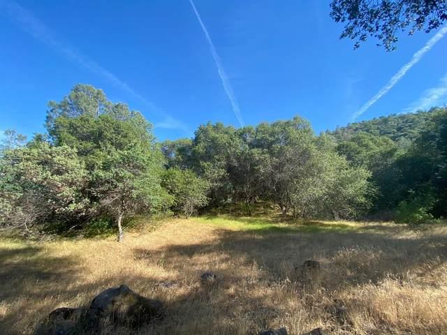 43020 Apache Ranch Road Road, Ahwahnee, CA 93601 (#560198) :: Twiss Realty