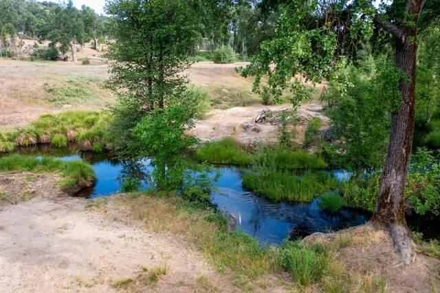 79-Acres Nelder Creek, Oakhurst, CA 93644 (#560294) :: Raymer Realty Group