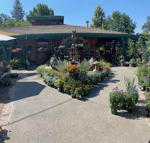 49266 Golden Oak Drive, Oakhurst, CA 93644 (#560684) :: Raymer Realty Group